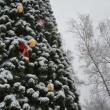 Новогодние развлечения в Нижнем Новгороде