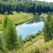 В Нижнем Новгороде решается судьба Волжской поймы