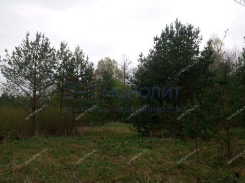 derevnya-vypolzovo-bogorodskiy-municipalnyy-okrug фото
