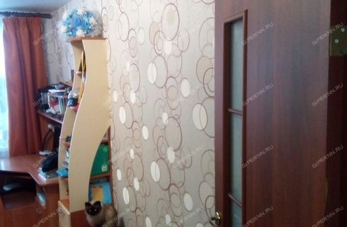 2-komnatnaya-selo-malaya-pica-dalnekonstantinovskiy-rayon фото