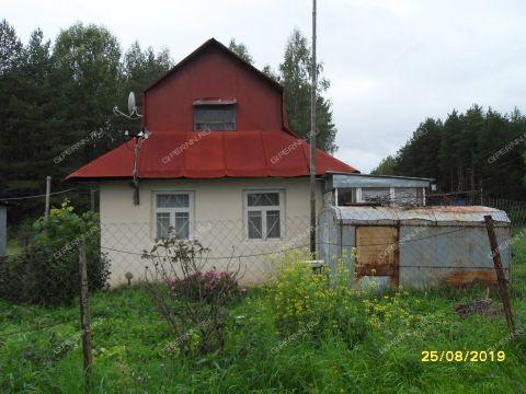 dom-derevnya-mamakino-gorodskoy-okrug-bor фото